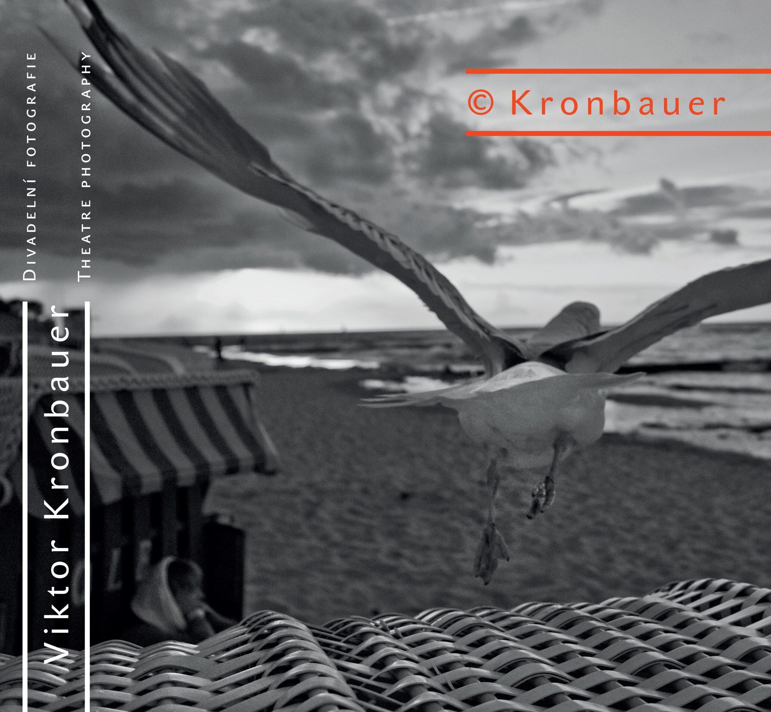 Viktor Kronbauer – Divadelní Fotografie